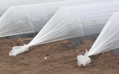 Cómo construir un túnel de cultivo antiheladas